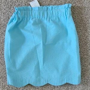Lauren James Lined Seersucker Skirt